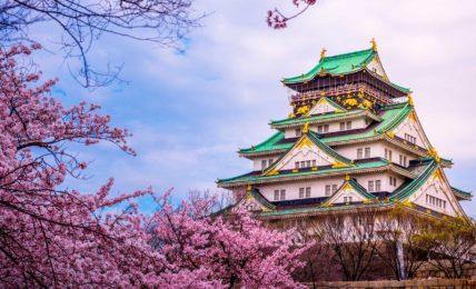 Castillo-de-Osaka